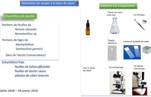 2 - Atelier 18 Microscopie 18 01 2018