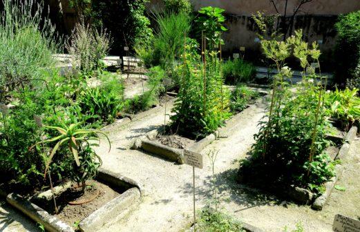 Les carrés du Jardin Ancien