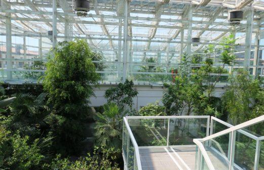 Serre Jardin Botanique