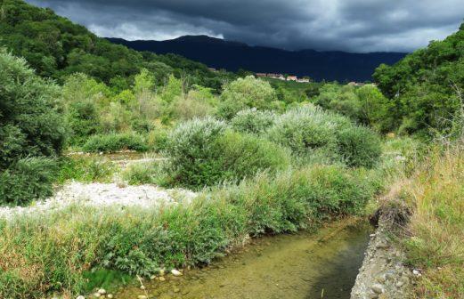 Allondon, zone alluviale